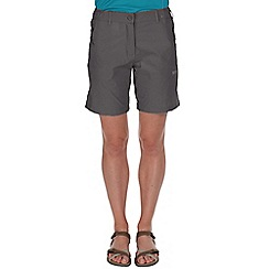Regatta - Grey fellwalk stretch shorts