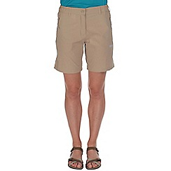 Regatta - Nutmeg fellwalk stretch shorts