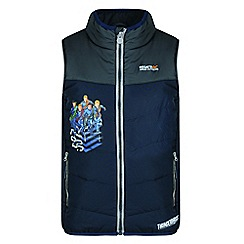 Regatta - Kids Blue 'Earthbreaker' thunderbird bodywarmer