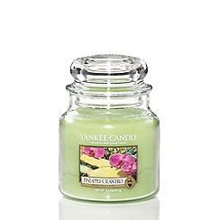 Yankee Candle - Medium pineapple cilantro housewamer candle