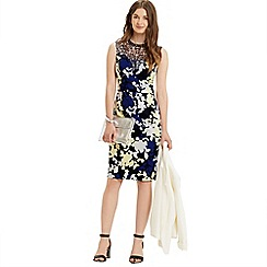 Oasis - Shadow floral lace dress