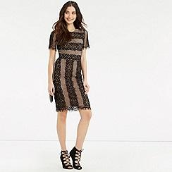 Oasis - Stripe Lace Dress