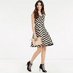 Oasis - Stripe Fit and Flare