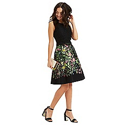 Oasis - Chelsea lace skater dress