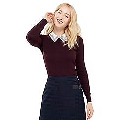 Oasis - Embroidered Collar Knit