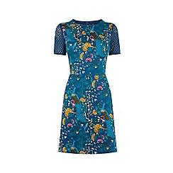 Oasis - V&A Lace Patched Shift Dress