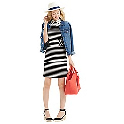 Oasis - Collar Stripe Cherry Dress