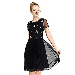 Oasis - Leila embroidered mesh skater dress