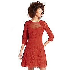 Oasis - Lace sleeve skater dress