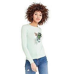 Oasis - Parakeet knit