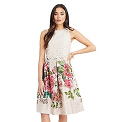 Oasis - Royal worcester placement midi dress
