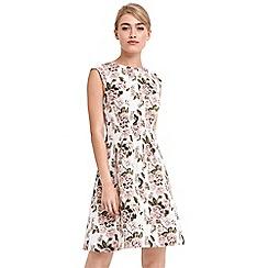 Oasis - Royal worcester jacquard skater dress
