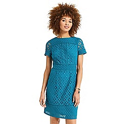 Oasis - short isla lace shift dress