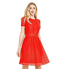 Oasis - Lace day skater dress