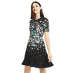 Oasis - Black multi coloured Rosetti print skater dress