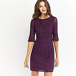 Oasis - Kick sleeve lace dress
