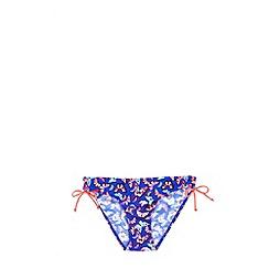 Oasis - Oasis butterfly triangle bikini bottom