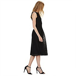 Warehouse - Formed linear midi dress