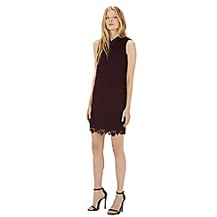 Warehouse - Collared lace dress