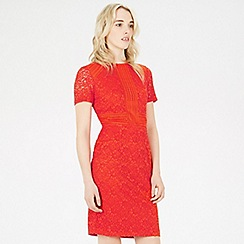 Warehouse - Short sleeve panel lace dress