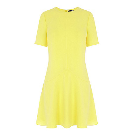 Warehouse - Seam panel fit and flare dress