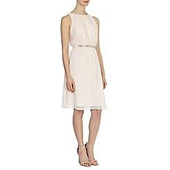 Coast - Debenhams exclusive - Clarissa dress
