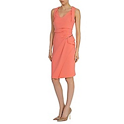 Coast - Chanti dress