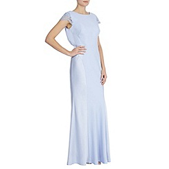 Coast - Adelina maxi dress