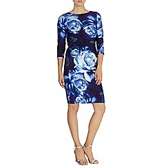 Coast - Farida dress petite
