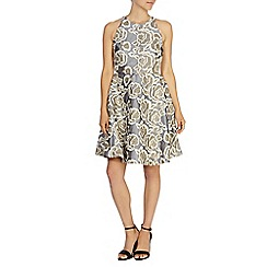Coast - Amelia embroidered dress