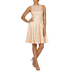 Coast - Eliza lace dress