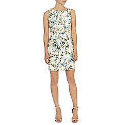Coast - Saskia print dress