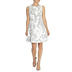 Coast - Eleanor trim dress