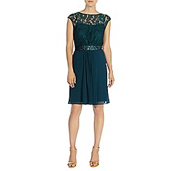 Coast - Lori lee lace short dress