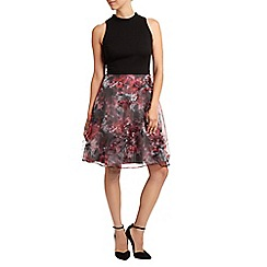 Coast - Lisette printed skirt dress