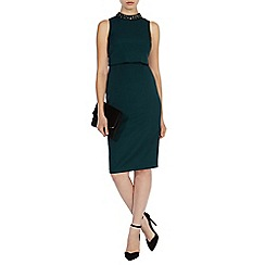 Coast - Petrina trim dress
