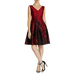 Coast - Rosa lee jacquard dress