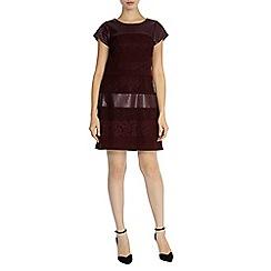 Coast - Loradi lace panel dress
