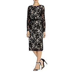 Coast - Coralla lace dress
