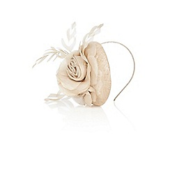Coast - Polly pill box fascinator