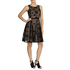 Coast - Pippa polka dot dress
