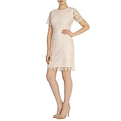 Coast - Rosita lace dress