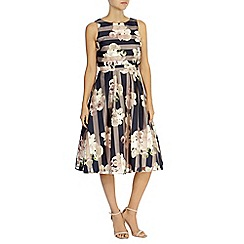Coast - Debenhams exclusive 'Breanna' floral stripe dress