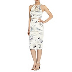 Coast - Peony print loula dress