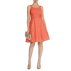 Coast - Dimitrina daisy textured dress