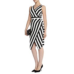 Coast - Ishani stripe shift dress