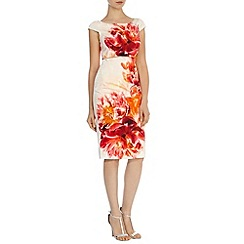 Coast - Rimini print dress petite