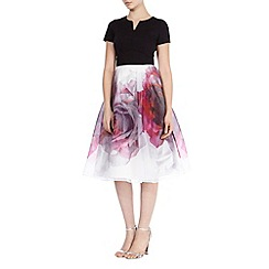 Coast - Debenhams exclsuive 'Tivoli' print isabella dress