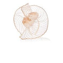 Coast - Efa weave fascinator