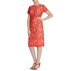 Coast - Debenhams exclusive 'Marlia' lace sleeved dress